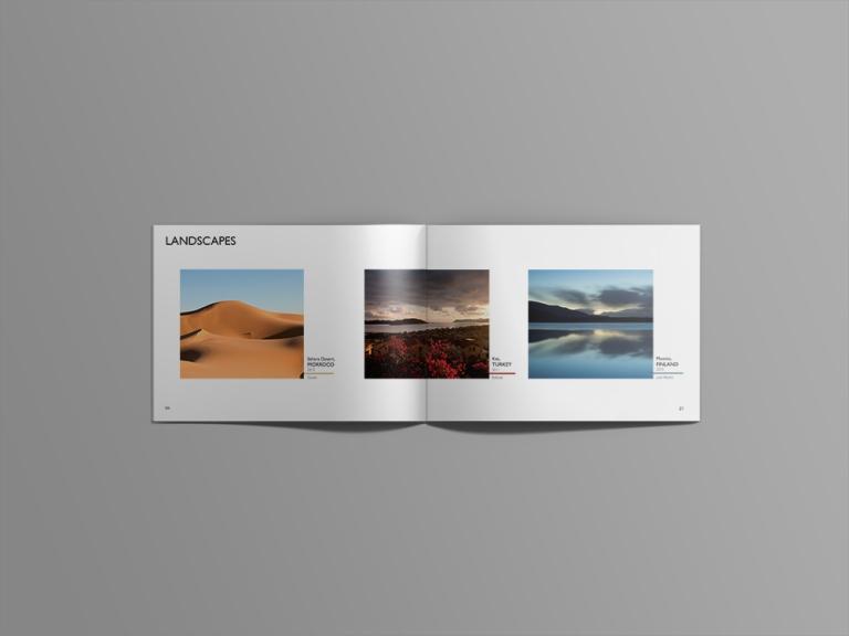 landscapes 1.jpg