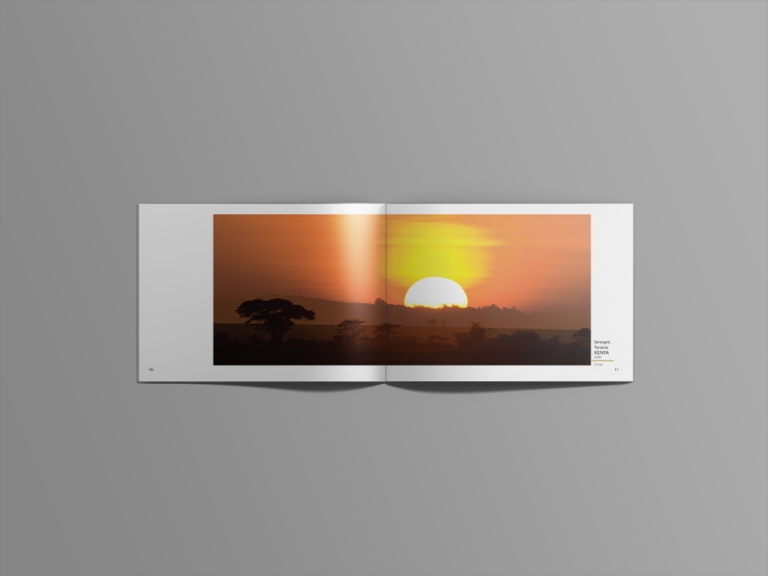 sun landscapes.jpg